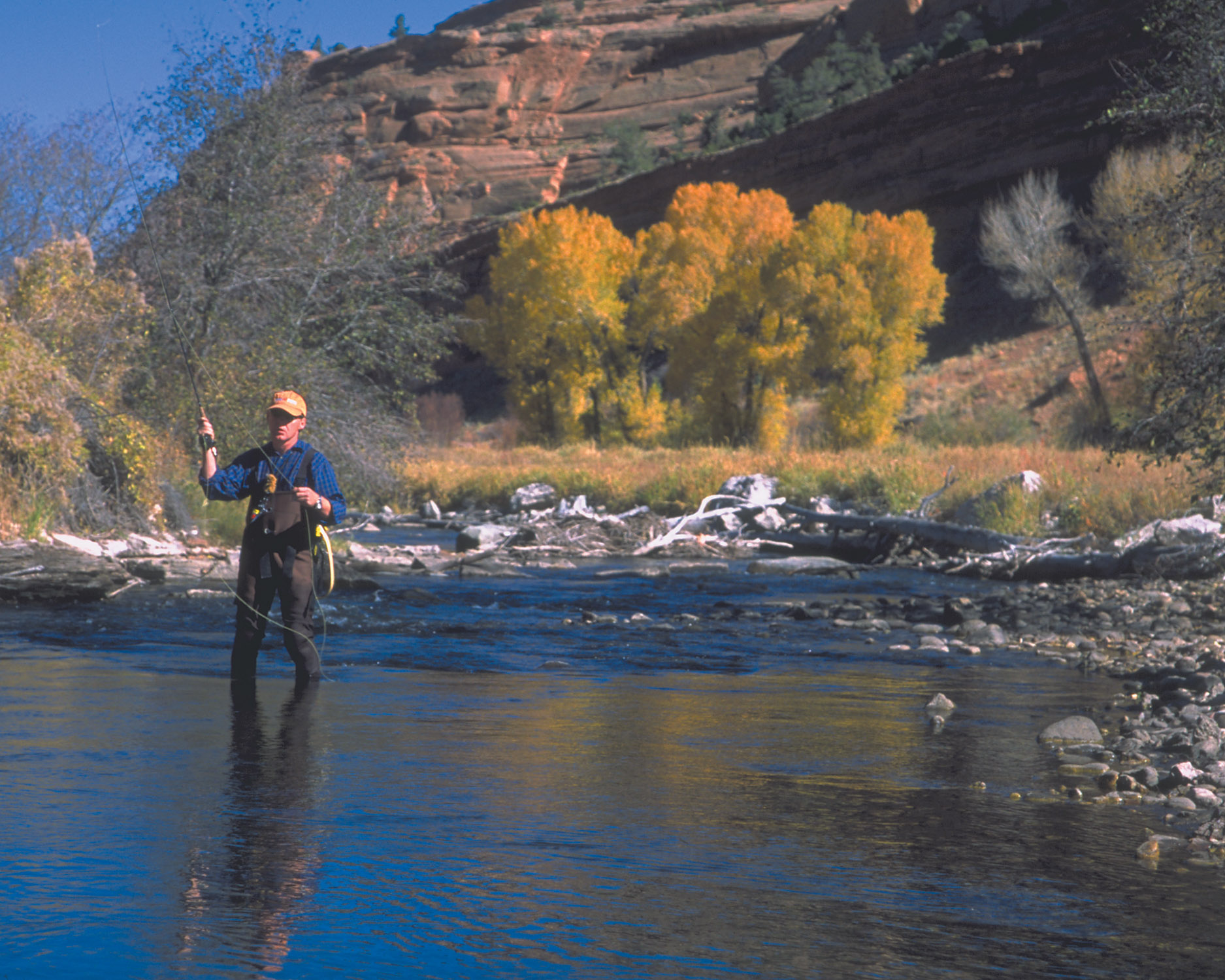 Wyoming for Wyoming game and fish regulations