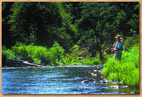 Arizona for Fishing in az