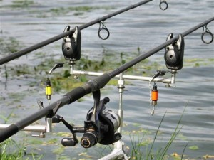 fishing bite indicators