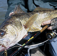 Fishing for Walleye in West Virginia