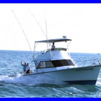5 Things to Consider Before You Charter a Fishing Boat