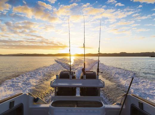 sea fishing fun