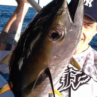 Top 7 Gold Coast Fishing Spots