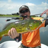 5 Important Factors to Consider while Buying the Best Spinning Reels