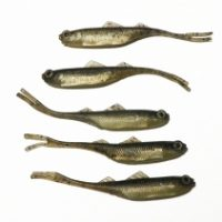 5 Fishing Techniques of Fishing with Lures