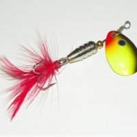 5 Important Tips to Choose Perfect Fishing Lures