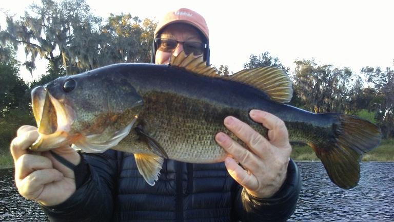 Florida bass fishing charter